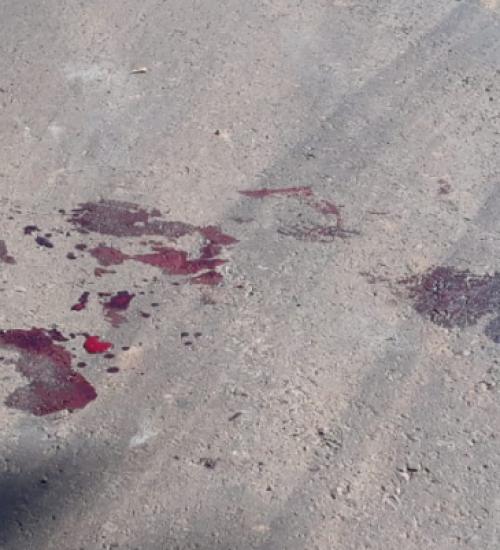 Homem investe contra Policiais, é baleado e morre em Mondaí.