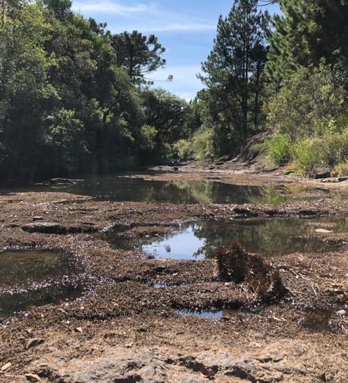 Governo do Estado reforça a necessidade do uso racional de água.