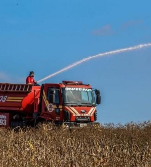 Incêndio atinge 30 mil metros quadrados de área de vegetação e mobiliza bombeiros.