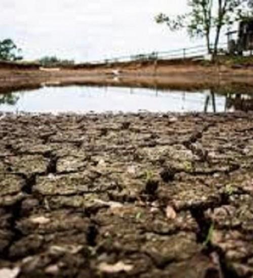 Mais de dez municípios da região da Amerios decretam situação de emergência por causa da estiagem.