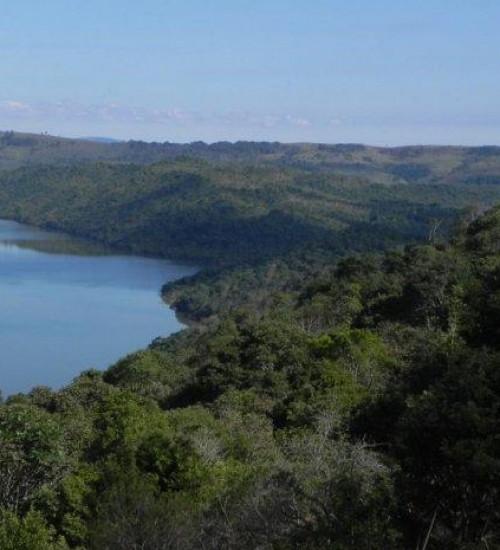 Santa Catarina reduziu desmatamento em 22%, aponta Atlas da Mata Atlântica.