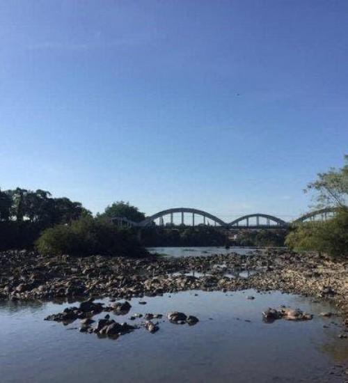 Santa Catarina tem pelo menos 222 cidades afetadas pela estiagem.
