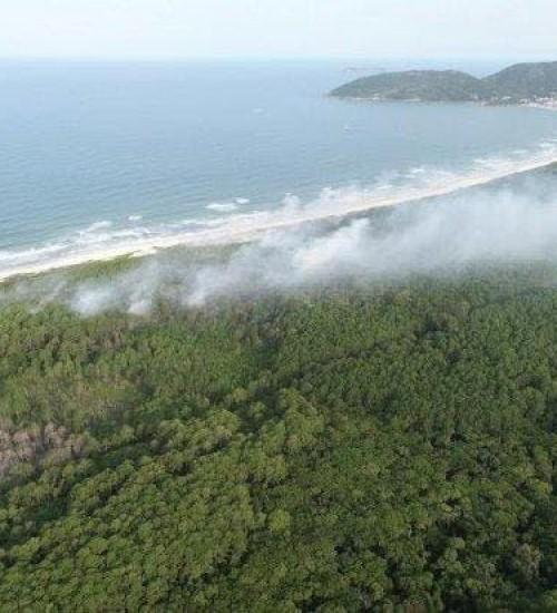 Campanha Nosso Parque quer evitar incêndios florestais em Santa Catarina.