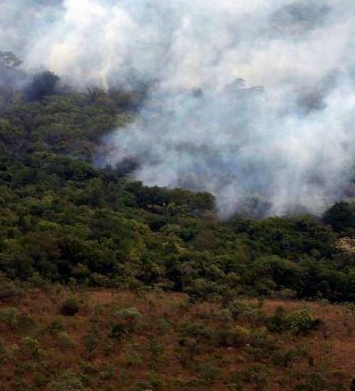 Decreto proíbe queimadas em todo o Brasil por 120 dias.