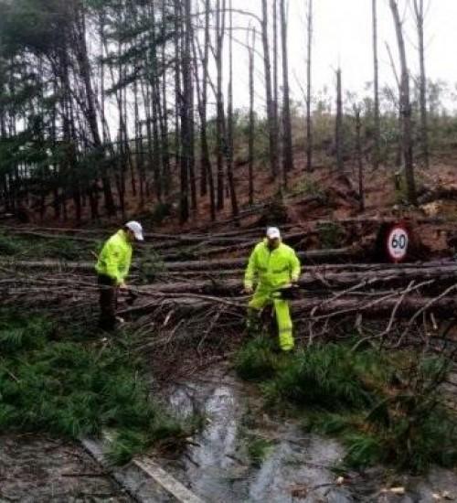 Governo de SC atua para minimizar danos de ciclone extratropical.