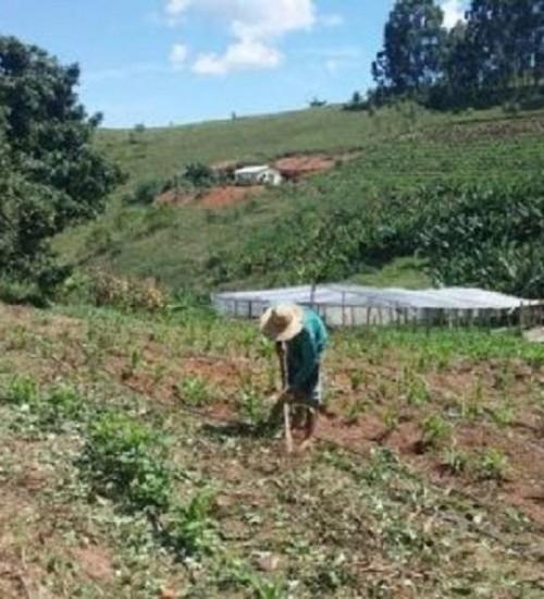 Sindicato incentiva agricultores a aderirem ao Crédito Fundiário.