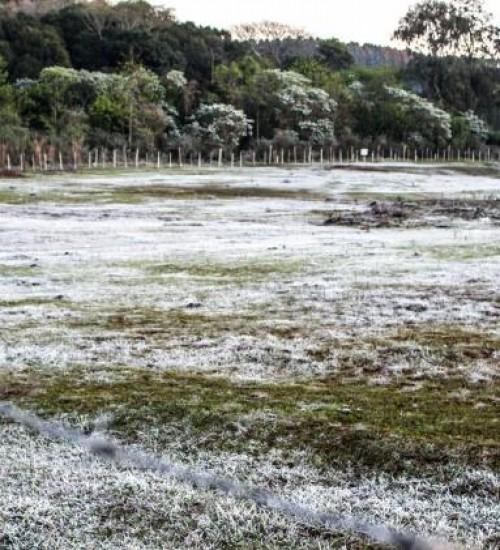 Em mais um amanhecer gelado, região registra vários pontos com forte geada
