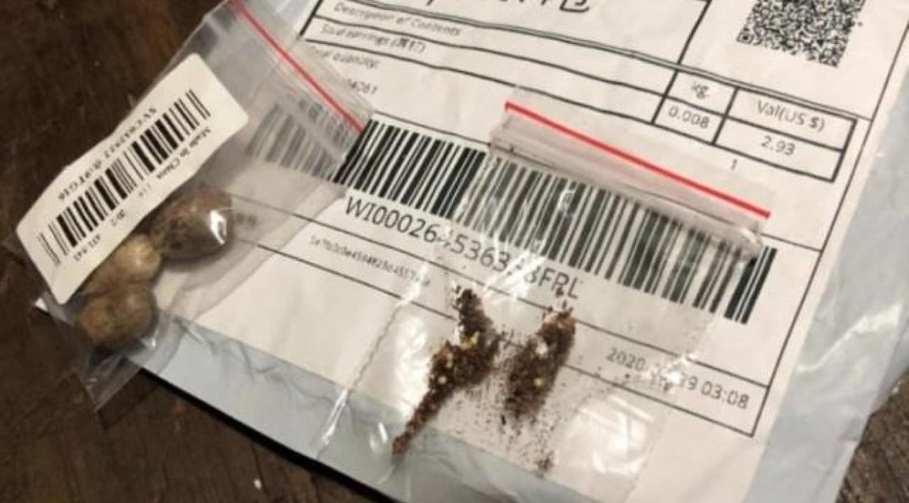 Cidasc alerta população de SC sobre pacotes de sementes provenientes da China