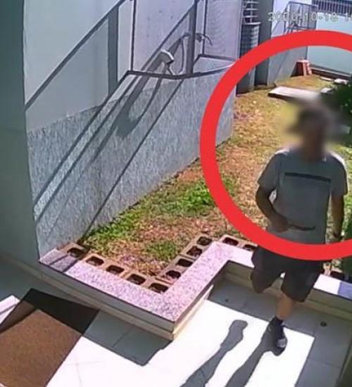 Homem invade apartamentos, furta R$ 2 mil e quase se atrapalha na fuga; Veja as imagens