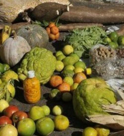 Certificação de produtos da agricultura familiar alcança 7 mil itens.