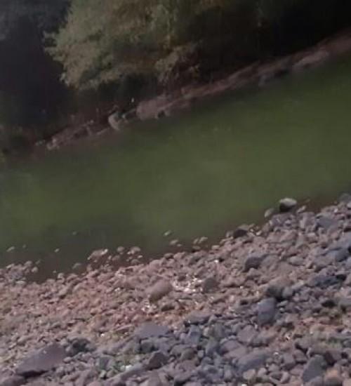 Bactéria é encontrada em rio que era usado para abastecer cidade no Oeste de SC.