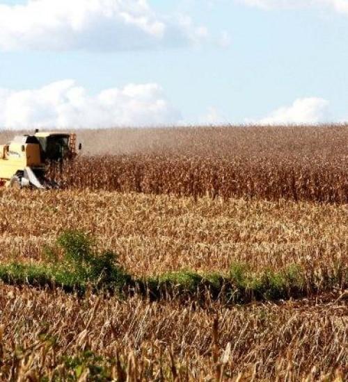 Governo de Santa Catarina cria Grupo de Trabalho para dar agilidade à Rota do Milho.
