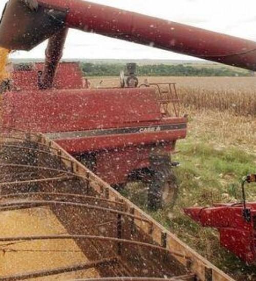Produtos agropecuários sofrem aumento no 1º trimestre de 2021.
