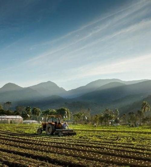 Governo do Estado complementa emendas da bancada federal para compra de equipamentos agrícolas.