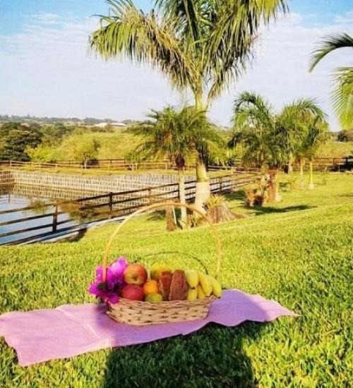 Gastronomia afetiva é diferencial de propriedade com turismo rural em Itapiranga.