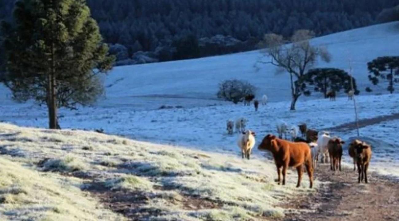 No auge do frio, 80% de SC pode ter temperaturas negativas de até -7ºC.