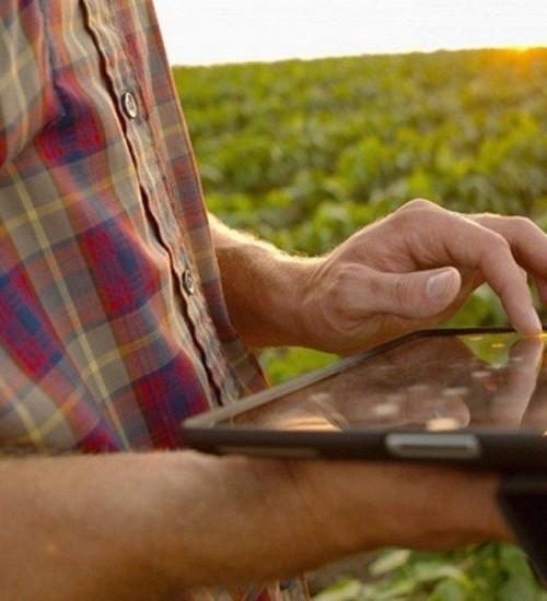 SC tem linha de crédito especial para jovens agricultores e pescadores.