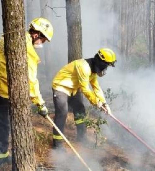 Aumento de ocorrências de incêndio na região do Extremo Oeste deixa Bombeiros Militares em alerta.