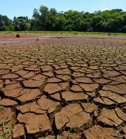 Estado inicia repasses de R$ 300 milhões para minimizar os impactos da estiagem.
