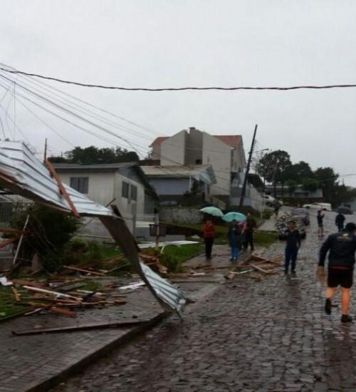 Temporal destelha casas, derruba árvores e causa apagão em cidades do Oeste.