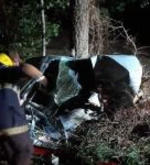 Veículo colide em animal, sai da pista e se choca contra árvores.