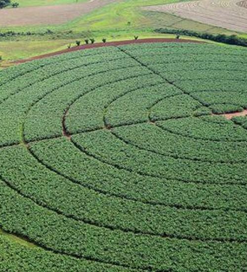 Brasil prevê reduzir emissão de 1 bilhão de toneladas de gases do efeito estufa na agricultura até 2030.