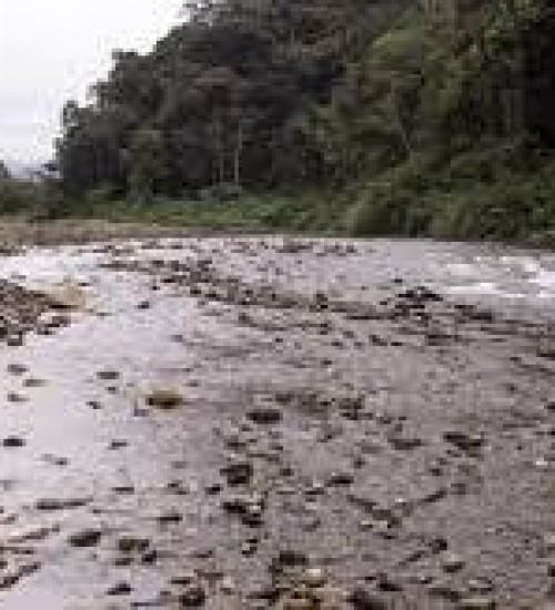 Chuva reduz em 34% o número de cidades de SC em situação de atenção para a estiagem, afirma Defesa Civil.