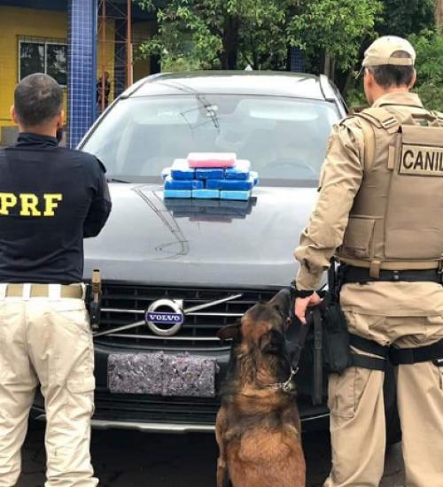 Homem é preso com quase 20kg de cocaína em Maravilha.